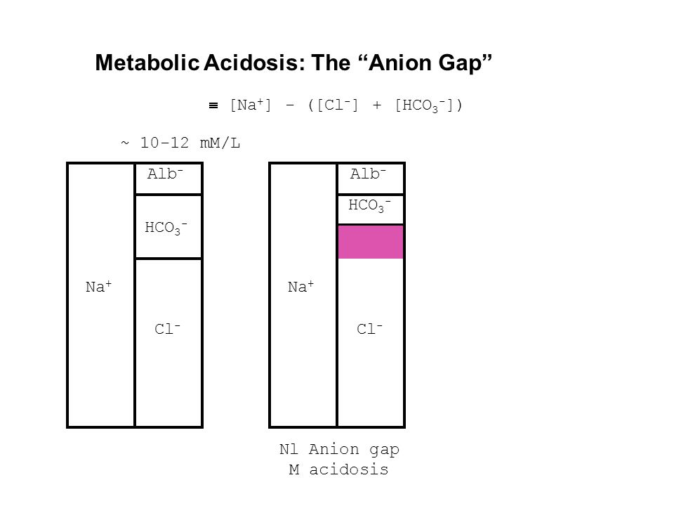 "Metabolic Acidosis: The ""Anion Gap"" Na + Cl - HCO 3 - Alb -  [Na + ] - ([Cl - ] + [HCO 3 - ]) Na + Cl - HCO 3 - Alb - Nl Anion gap M acidosis ~ 10-12"
