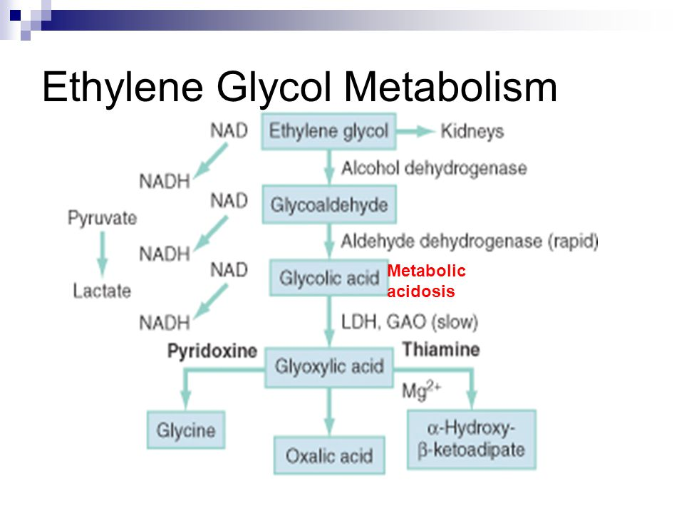 Ethylene Glycol Metabolism Metabolic acidosis
