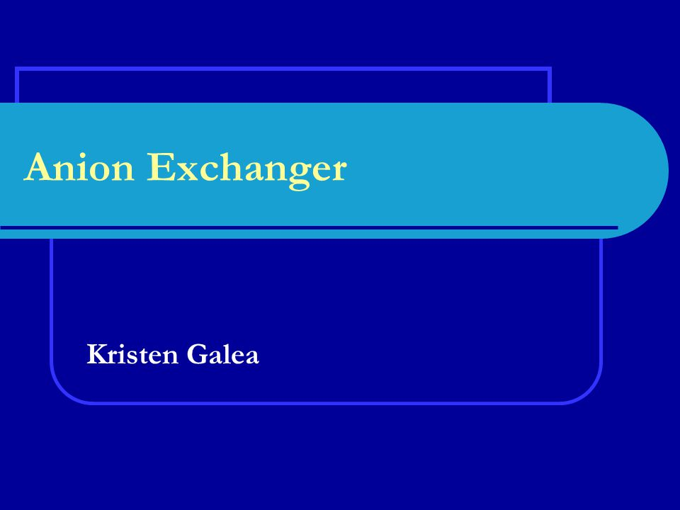 Anion Exchanger Kristen Galea