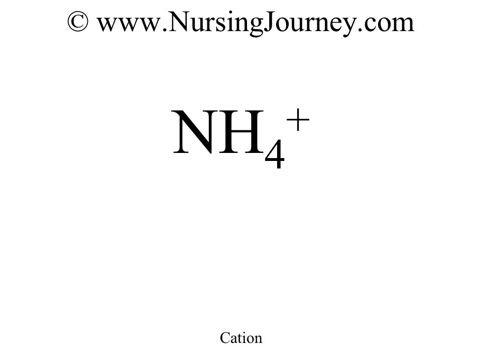 © www.NursingJourney.com NH 4 + Cation