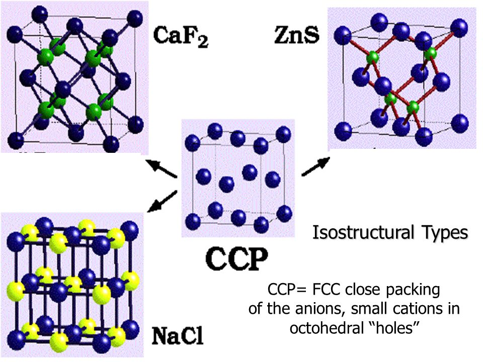 "Isostructural Types CCP= FCC close packing of the anions, small cations in octohedral ""holes"""