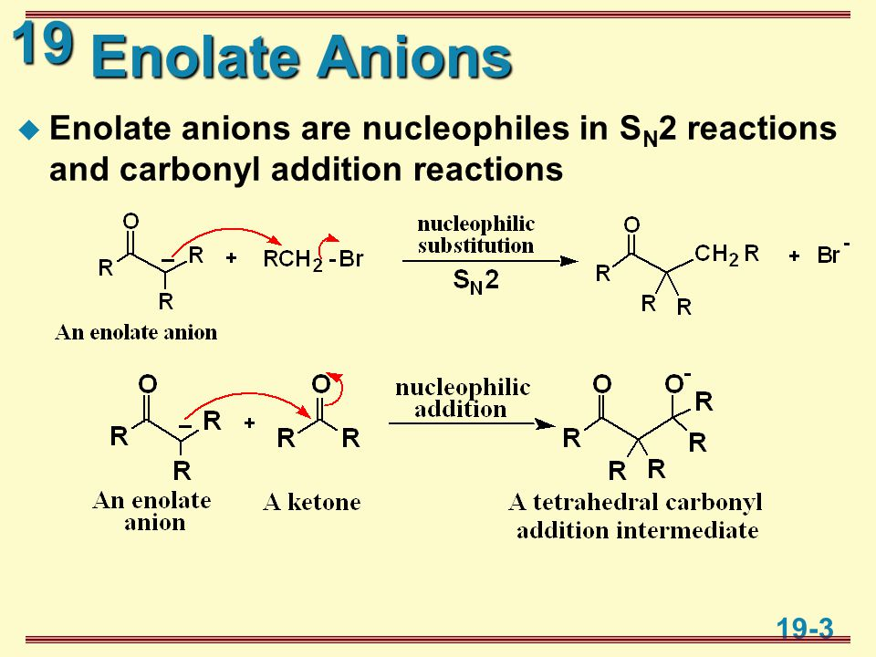 19 19-3 Enolate Anions  Enolate anions are nucleophiles in S N 2 reactions and carbonyl addition reactions