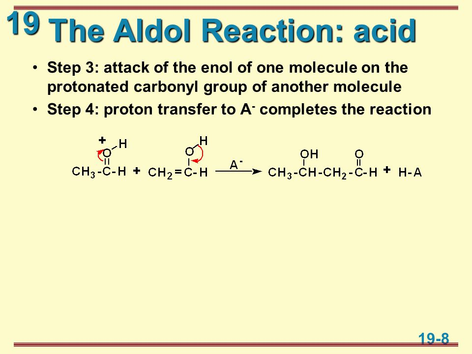 19 19-8 The Aldol Reaction: acid Step 3: attack of the enol of one molecule on the protonated carbonyl group of another molecule Step 4: proton transfer to A - completes the reaction