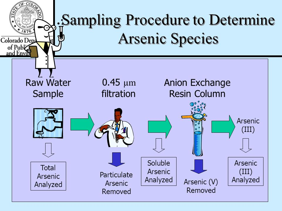Speciation Considerations Arsenic Speciation in the Field –Three samples will be collected for the As speciation determination: Raw source water Filte