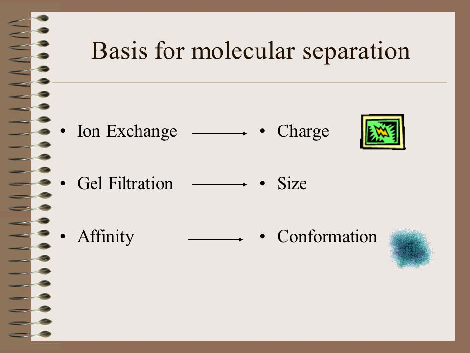 Basis for molecular separation Ion Exchange Gel Filtration Affinity Charge Size Conformation