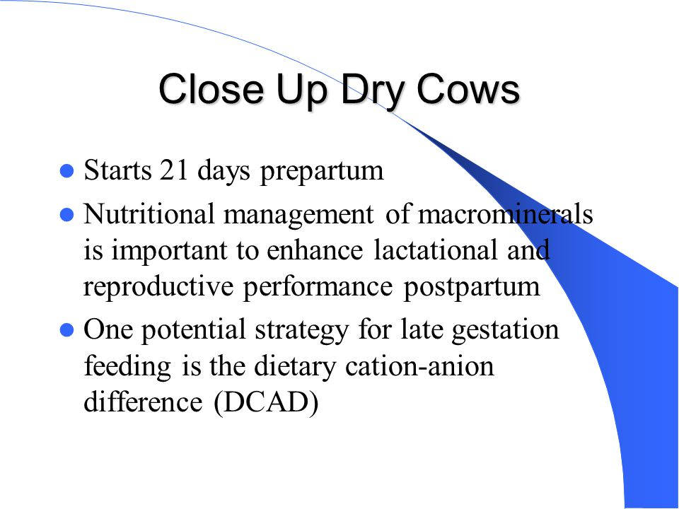 Dietary Cation-Anion Difference Systemic acid/base balance of the cow Feeding anionic diet increases H+ ions (creates acidosis).