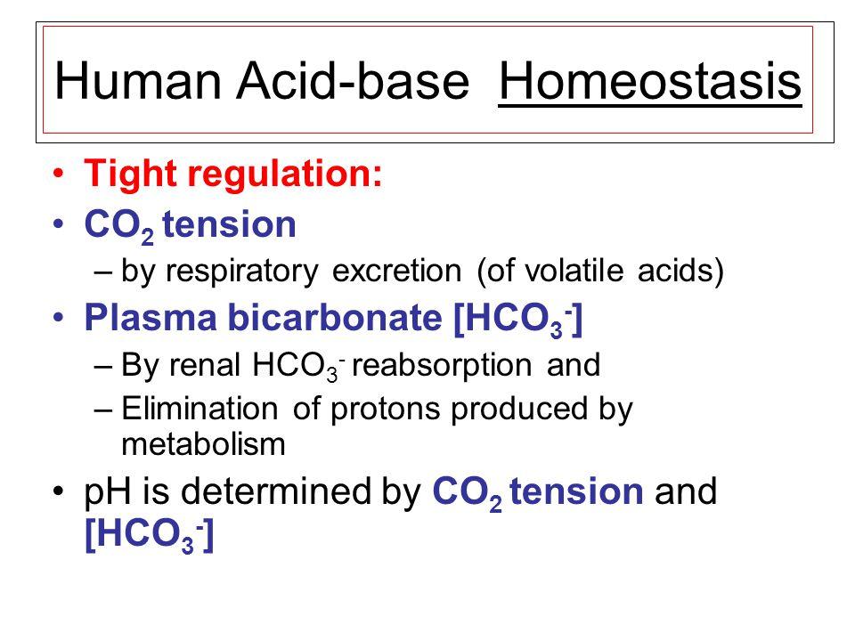 Human Acid-base Homeostasis Tight regulation: CO 2 tension –by respiratory excretion (of volatile acids) Plasma bicarbonate [HCO 3 - ] –By renal HCO 3