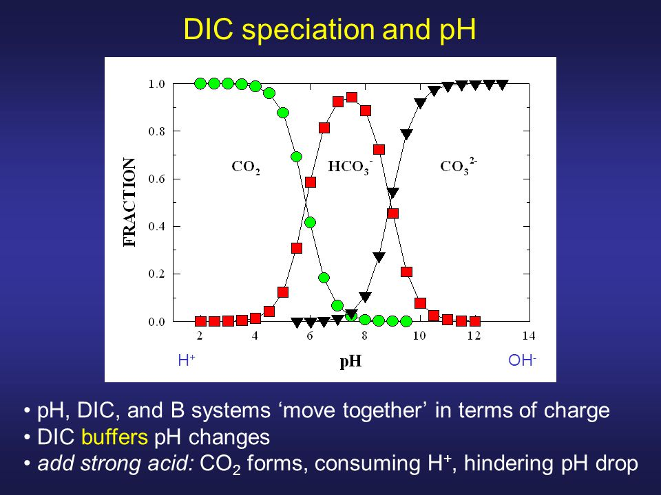 pH, DIC, and B systems 'move together' in terms of charge DIC buffers pH changes add strong acid: CO 2 forms, consuming H +, hindering pH drop DIC speciation and pH H + OH -