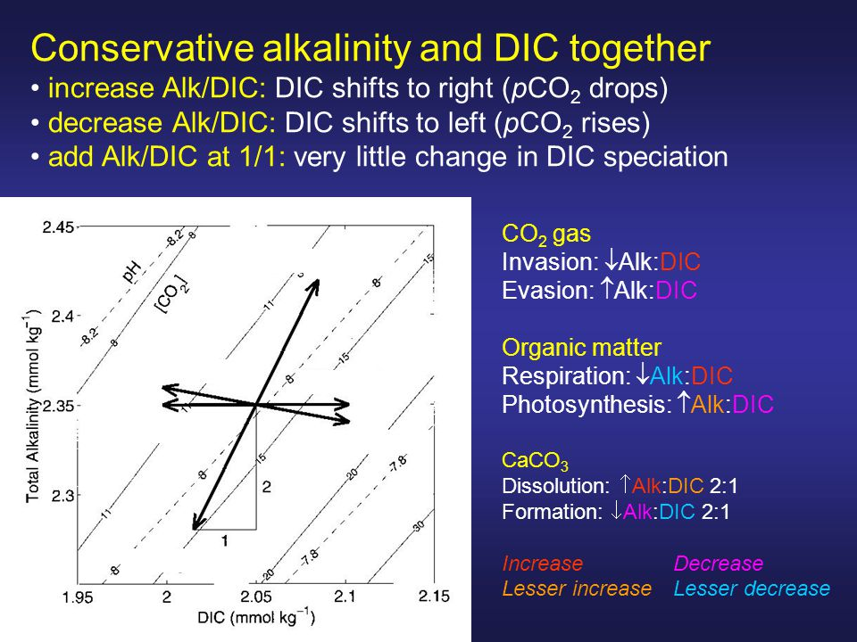 Conservative alkalinity and DIC together increase Alk/DIC: DIC shifts to right (pCO 2 drops) decrease Alk/DIC: DIC shifts to left (pCO 2 rises) add Alk/DIC at 1/1: very little change in DIC speciation CO 2 gas Invasion:  Alk:DIC Evasion:  Alk:DIC Organic matter Respiration:  Alk:DIC Photosynthesis:  Alk:DIC CaCO 3 Dissolution:  Alk:DIC 2:1 Formation:  Alk:DIC 2:1 IncreaseDecrease Lesser increaseLesser decrease