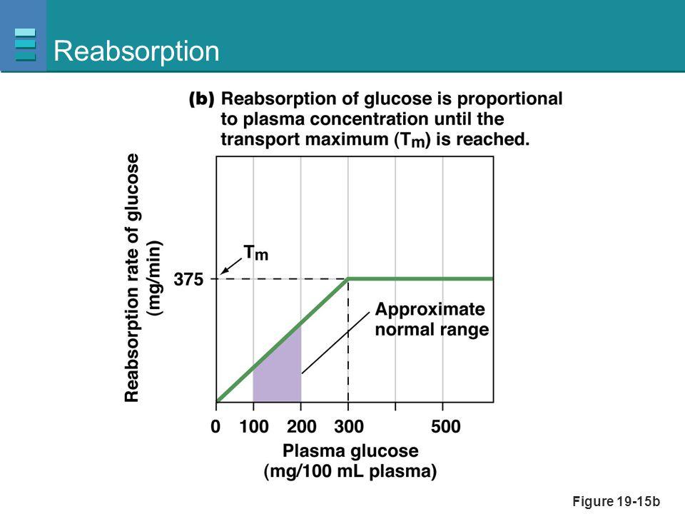Figure 19-15b Reabsorption