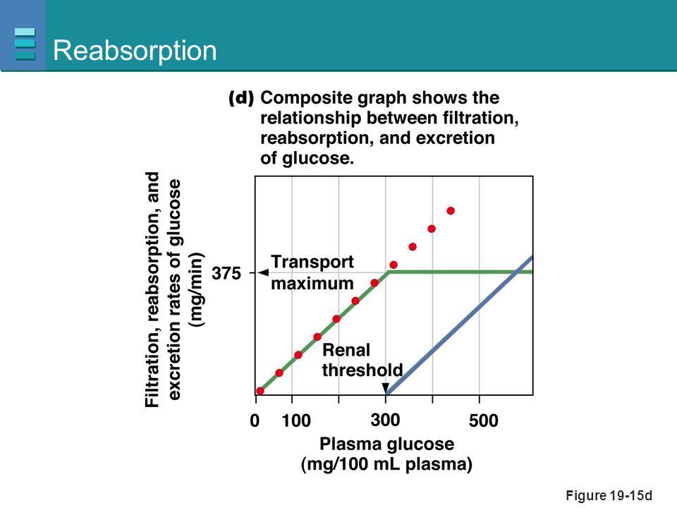 Figure 19-15d Reabsorption
