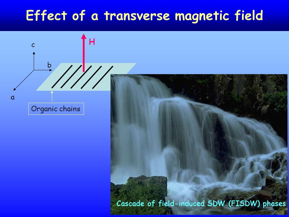 22 Effect of a transverse magnetic field H a b c Organic chains Cascade of field-induced SDW (FISDW) phases