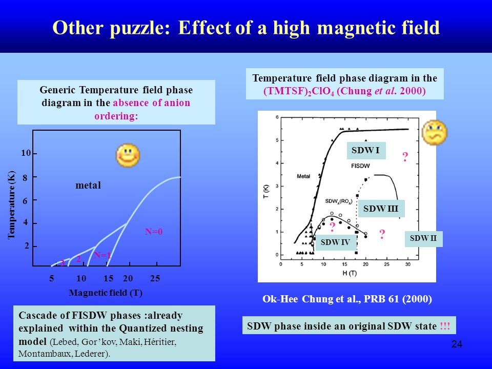 24 Other puzzle: Effect of a high magnetic field Generic Temperature field phase diagram in the absence of anion ordering: 2 4 6 8 10 Temperature (K) 510152025 N=0 N=1 2 3 metal Cascade of FISDW phases :already explained within the Quantized nesting model (Lebed, Gor'kov, Maki, Héritier, Montambaux, Lederer).