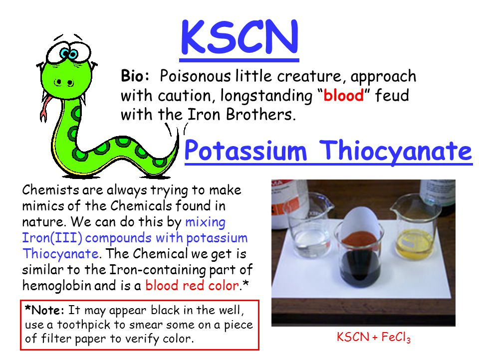 KSCN Potassium Thiocyanate Bio: Poisonous little creature, approach with caution, longstanding blood feud with the Iron Brothers.