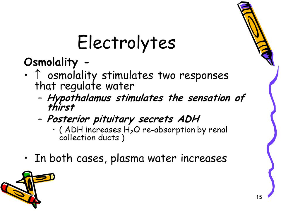 Electrolytes Osmolality -  osmolality stimulates two responses that regulate water –Hypothalamus stimulates the sensation of thirst –Posterior pituitary secrets ADH ( ADH increases H 2 O re-absorption by renal collection ducts ) In both cases, plasma water increases 15