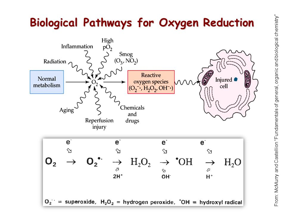 Biological Pathways for Oxygen Reduction From: McMurry and Castellion Fundamentals of general, organic and biological chemistry
