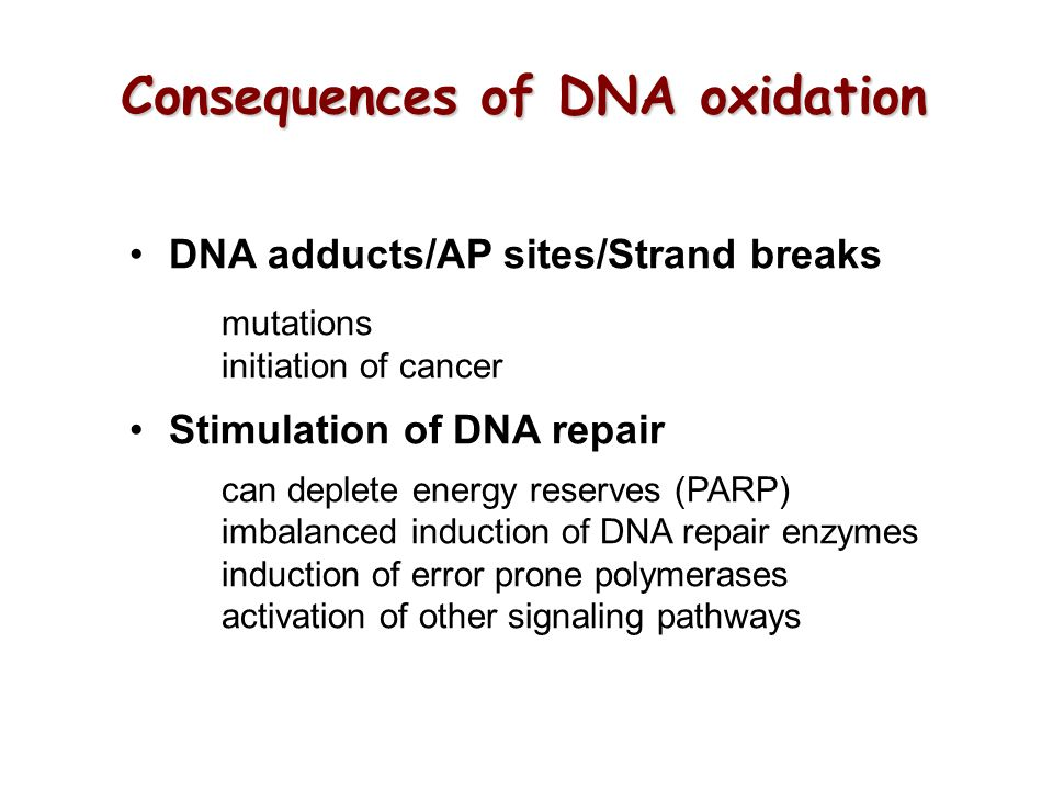 Consequences of DNA oxidation DNA adducts/AP sites/Strand breaks mutations initiation of cancer Stimulation of DNA repair can deplete energy reserves (PARP) imbalanced induction of DNA repair enzymes induction of error prone polymerases activation of other signaling pathways