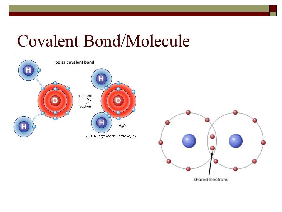 Covalent Bond/Molecule