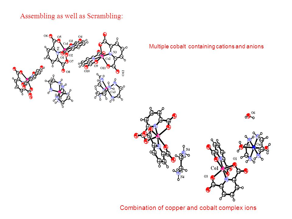 Assembling as well as Scrambling: Combination of copper and cobalt complex ions Multiple cobalt containing cations and anions