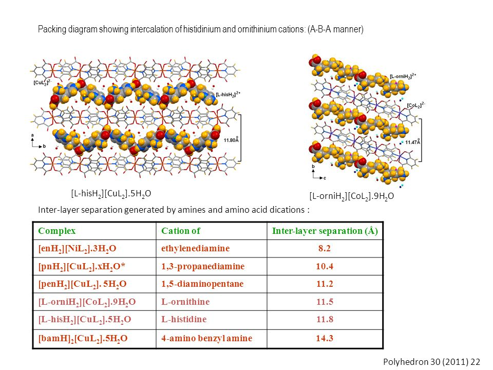 Packing diagram showing intercalation of histidinium and ornithinium cations: (A-B-A manner) [L-orniH 2 ][CoL 2 ].9H 2 O [L-hisH 2 ][CuL 2 ].5H 2 O Polyhedron 30 (2011) 22 ComplexCation ofInter-layer separation (Å) [enH 2 ][NiL 2 ].3H 2 Oethylenediamine8.2 [pnH 2 ][CuL 2 ].xH 2 O*1,3-propanediamine10.4 [penH 2 ][CuL 2 ].