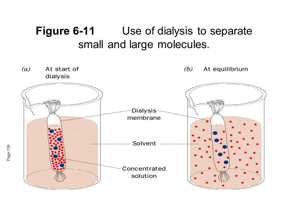 Figure 6-11Use of dialysis to separate small and large molecules. Page 139
