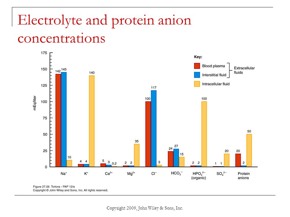 Copyright 2009, John Wiley & Sons, Inc. Electrolyte and protein anion concentrations