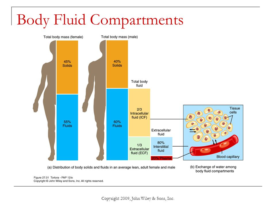 Copyright 2009, John Wiley & Sons, Inc. Body Fluid Compartments