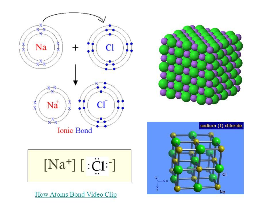 [Na + ] [ - ] How Atoms Bond Video Clip