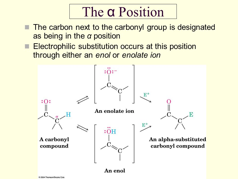 The α Position The carbon next to the carbonyl group is designated as being in the α position Electrophilic substitution occurs at this position throu