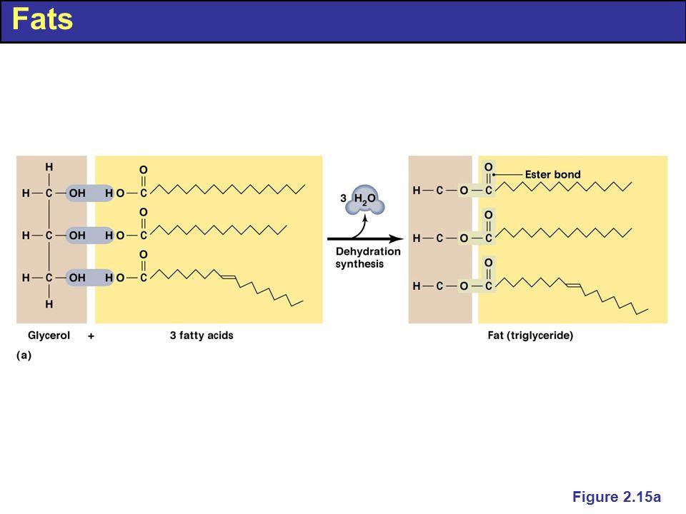 Fats Figure 2.15a