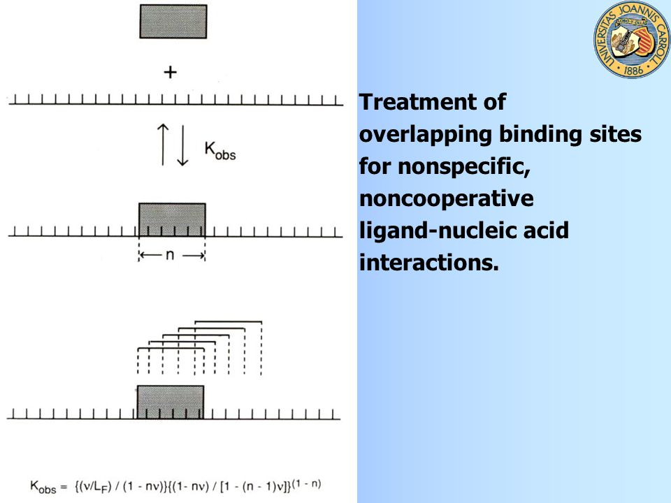 Treatment of overlapping binding sites for nonspecific, noncooperative ligand-nucleic acid interactions.