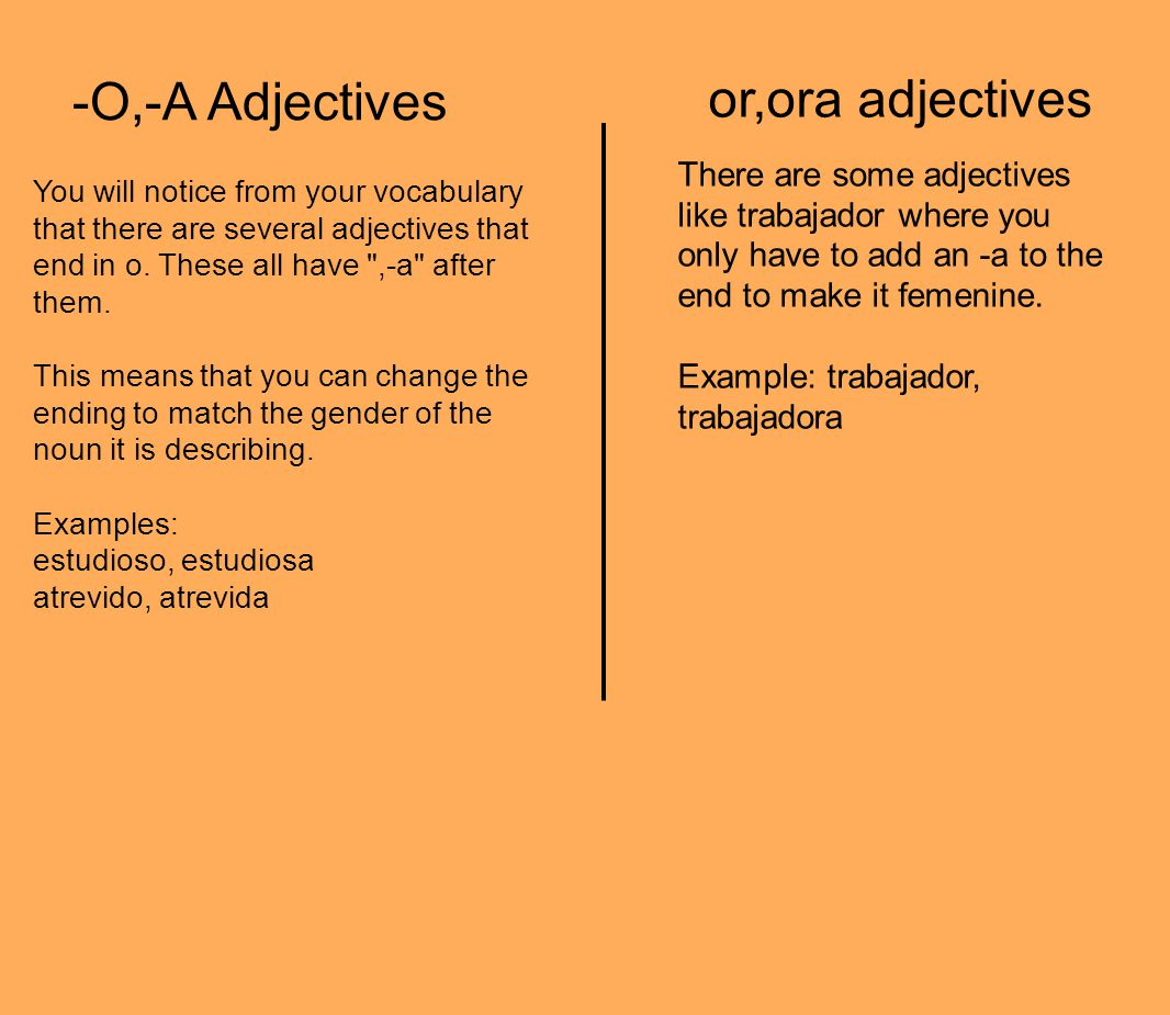 -O,-A Adjectives You will notice from your vocabulary that there are several adjectives that end in o. These all have