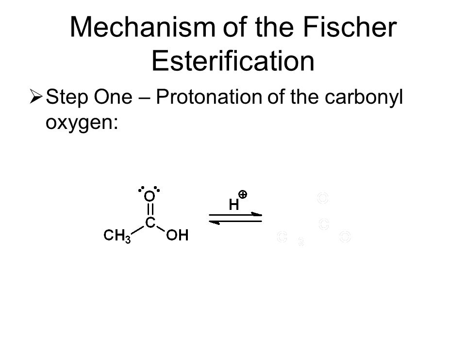 Mechanism of the Fischer Esterification  Step One – Protonation of the carbonyl oxygen: