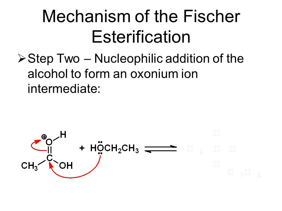 Mechanism of the Fischer Esterification  Step Two – Nucleophilic addition of the alcohol to form an oxonium ion intermediate: