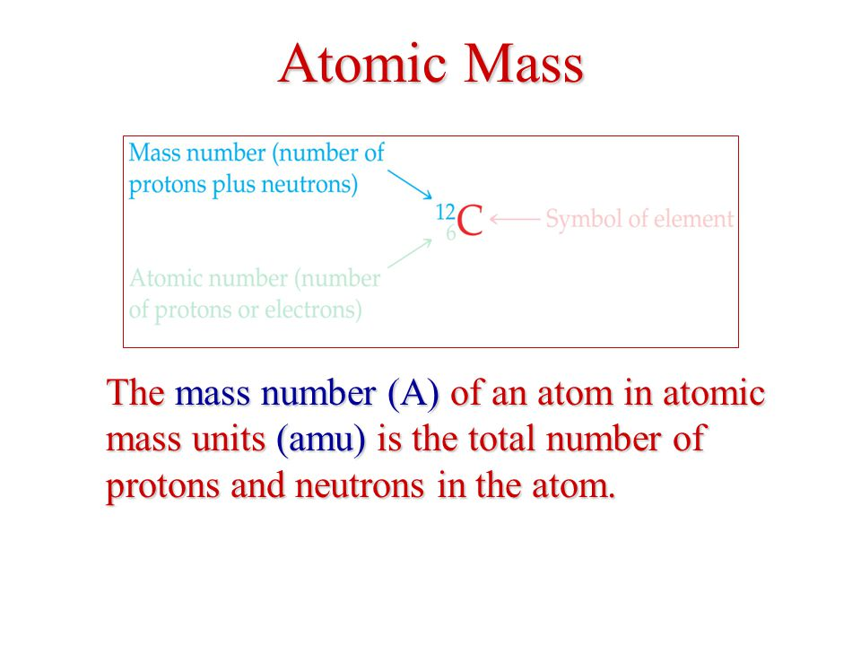 Atomic Mass The mass number (A) of an atom in atomic mass units (amu) is the total number of protons and neutrons in the atom.