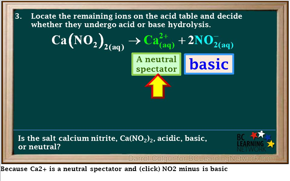 Because Ca2+ is a neutral spectator and (click) NO2 minus is basic Is the salt calcium nitrite, Ca(NO 2 ) 2, acidic, basic, or neutral? 3.Locate the r