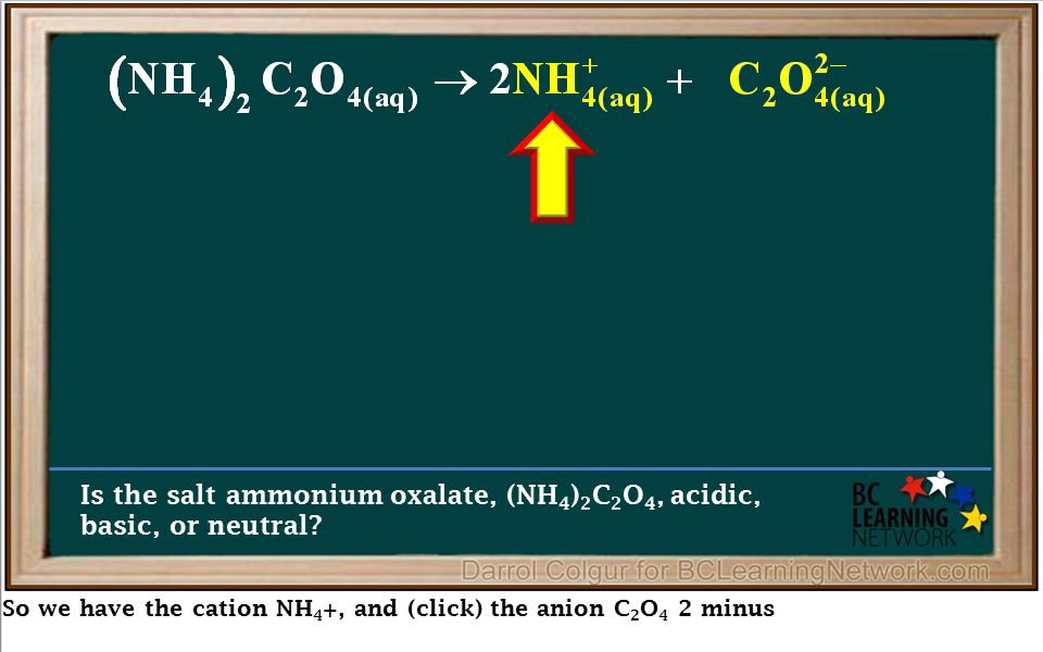 So we have the cation NH 4 +, and (click) the anion C 2 O 4 2 minus Is the salt ammonium oxalate, (NH 4 ) 2 C 2 O 4, acidic, basic, or neutral?