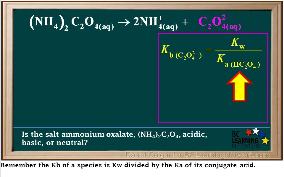 Remember the Kb of a species is Kw divided by the Ka of its conjugate acid. Is the salt ammonium oxalate, (NH 4 ) 2 C 2 O 4, acidic, basic, or neutral