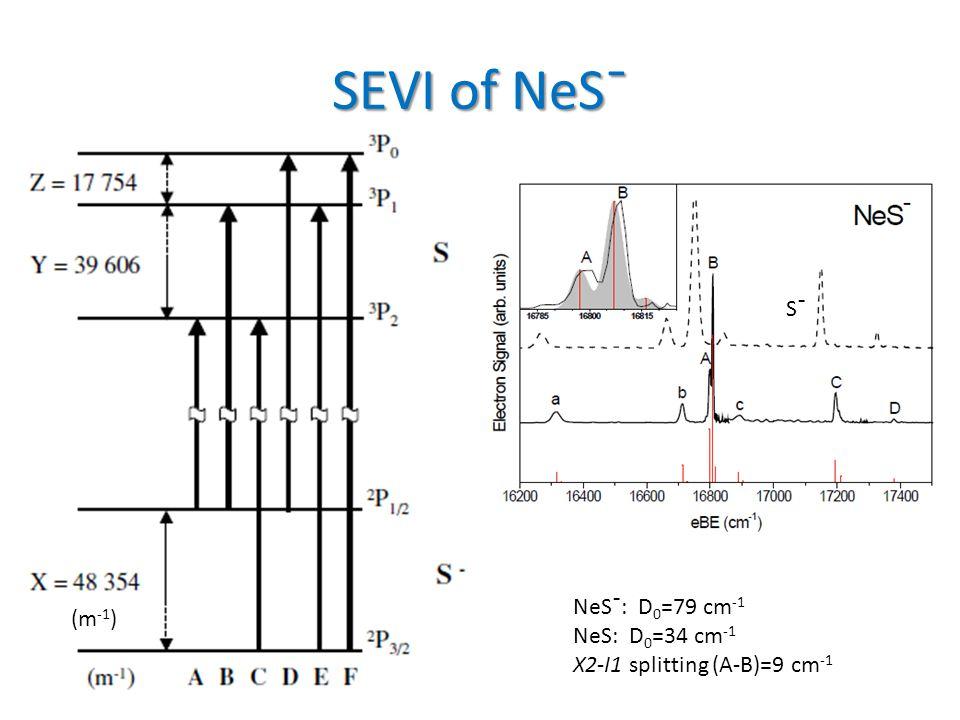 SEVI of NeSˉ NeSˉ: D 0 =79 cm -1 NeS: D 0 =34 cm -1 X2-I1 splitting (A-B)=9 cm -1 Sˉ (m -1 )
