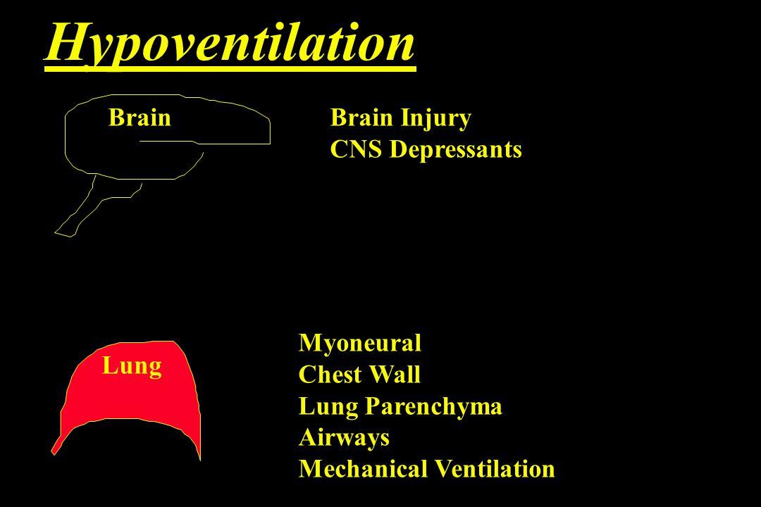 Hyperventilation Anxiety Drugs Encephalopathy Pregnancy Mechanical Ventilation Pulmonary Fibrosis Pulmonary Edema Brain Lung