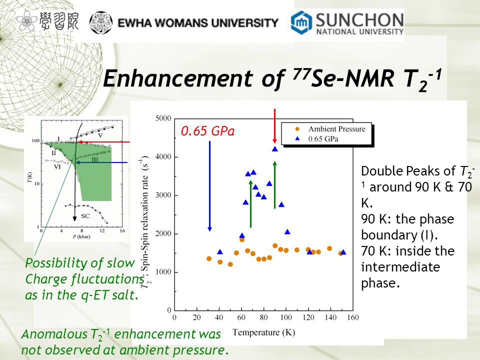 Enhancement of 77 Se-NMR T 2 -1 Anomalous T 2 -1 enhancement was not observed at ambient pressure.