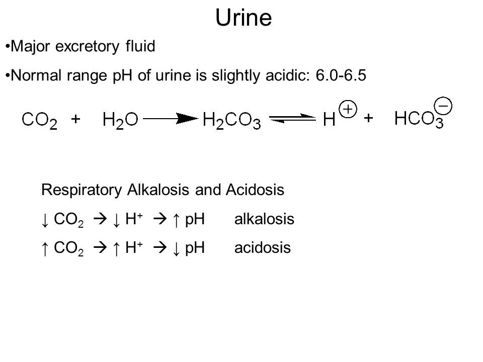Urine Major excretory fluid Normal range pH of urine is slightly acidic: 6.0-6.5 Respiratory Alkalosis and Acidosis ↓ CO 2  ↓ H +  ↑ pH alkalosis ↑ CO 2  ↑ H +  ↓ pHacidosis