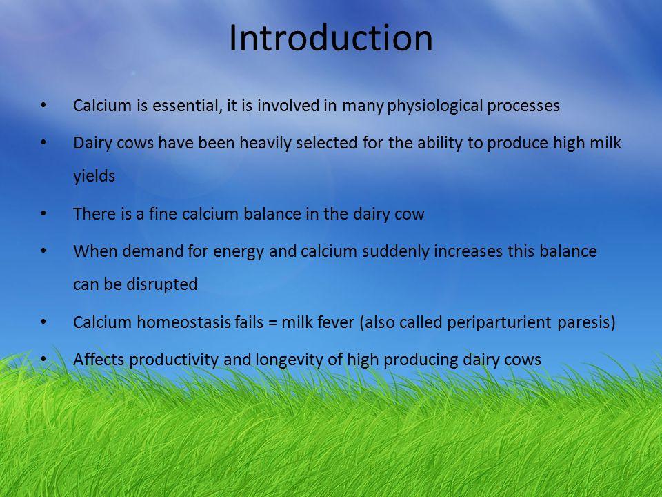 The calcium balance (Source: Horst 1986)