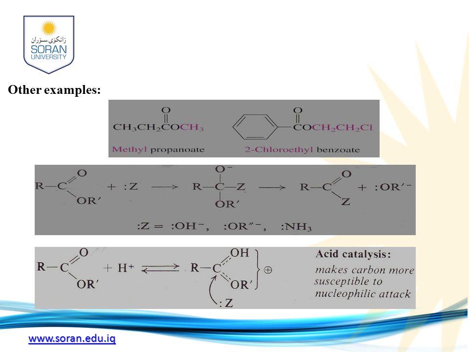 www.soran.edu.iq Other examples: