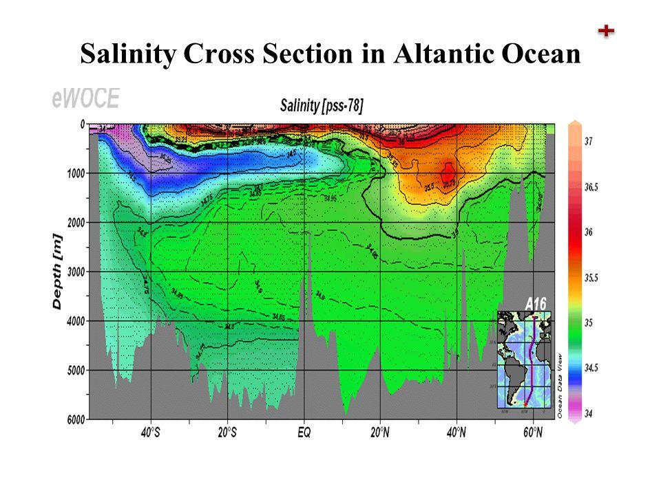 Salinity Cross Section in Altantic Ocean