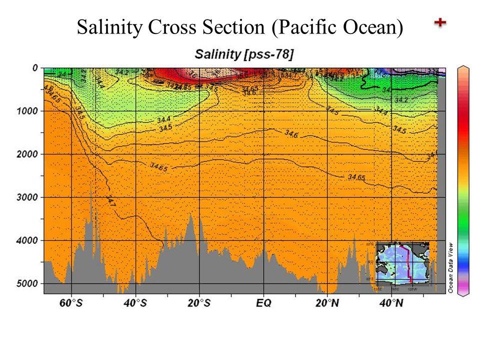 Salinity Cross Section (Pacific Ocean)