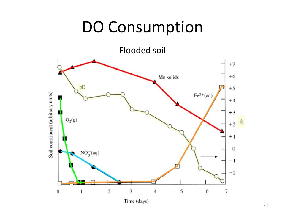 DO Consumption Flooded soil 54