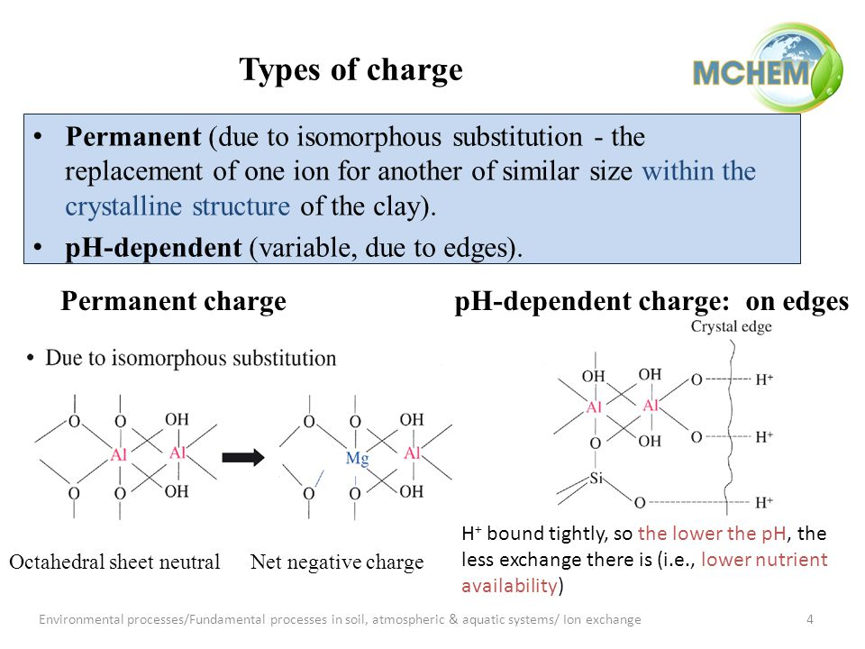 Permanent charge Octahedral sheet neutralNet negative charge pH-dependent charge: on edges H + bound tightly, so the lower the pH, the less exchange there is (i.e., lower nutrient availability) Types of charge Permanent (due to isomorphous substitution - the replacement of one ion for another of similar size within the crystalline structure of the clay).