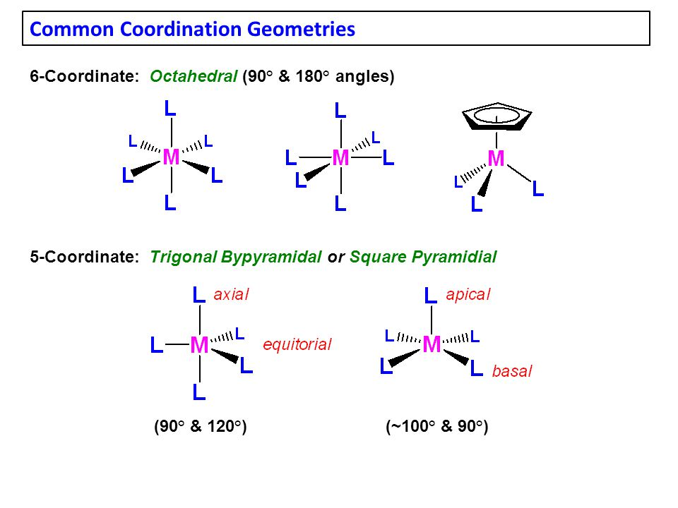 Common Coordination Geometries 6-Coordinate: Octahedral (90° & 180° angles) 5-Coordinate: Trigonal Bypyramidal or Square Pyramidial (90° & 120°)(~100° & 90°)