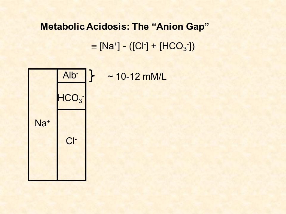 Metabolic Acidosis: The Anion Gap Na + Cl - HCO 3 - Alb -  [Na + ] - ([Cl - ] + [HCO 3 - ]) ~ 10-12 mM/L